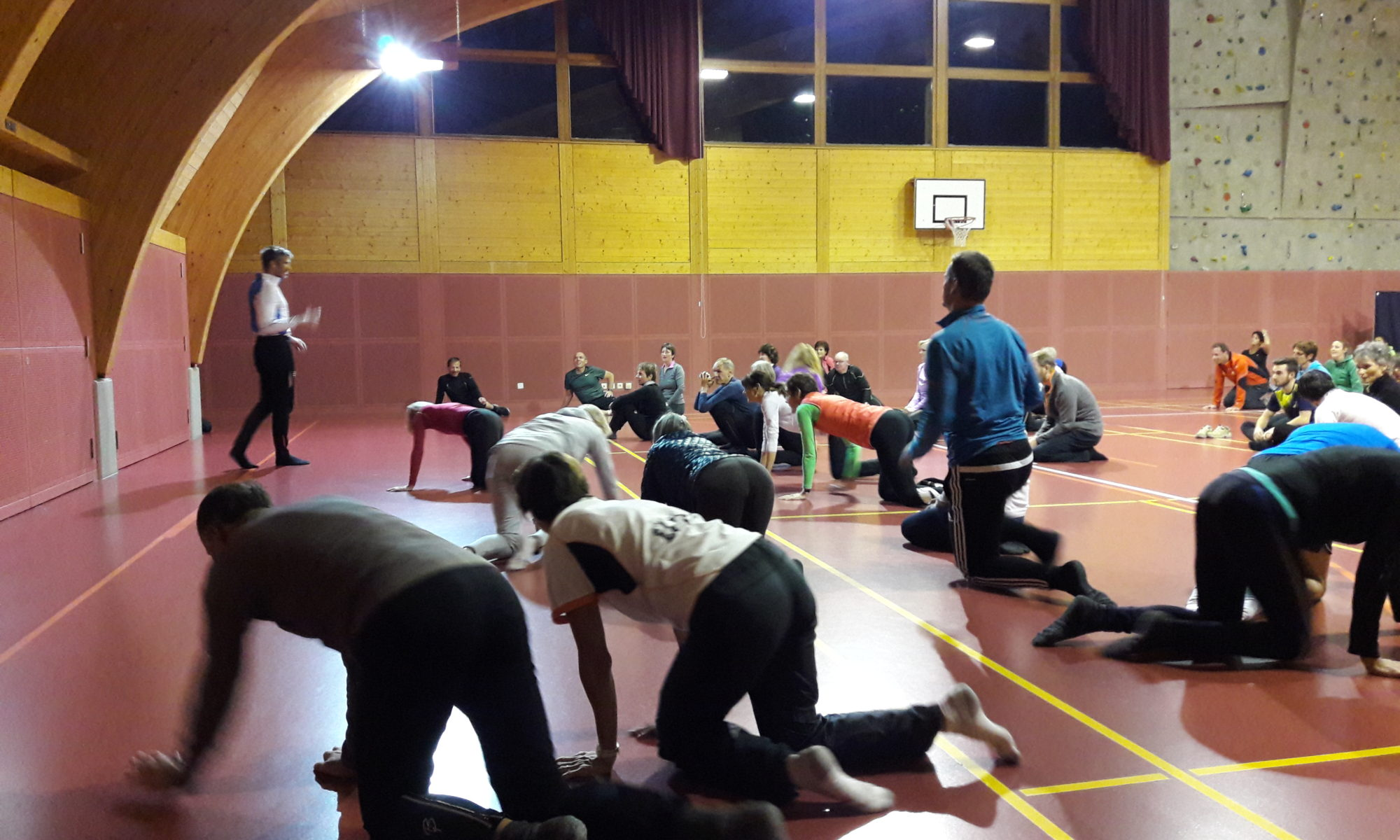 Sporttherapie, Bewegungstherapie, Seminar, Workshop